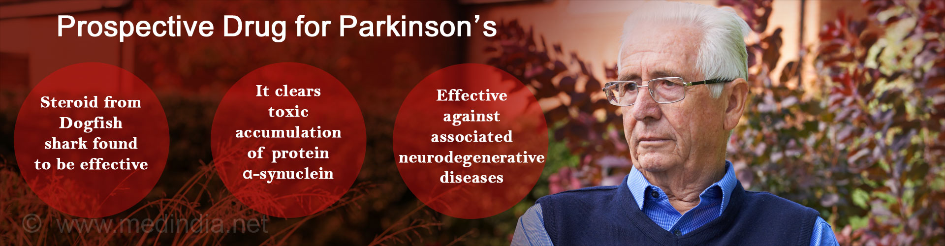 Toxic Protein in Parkinson's Disease Patients Removed by Steroid from Dogfish Shark