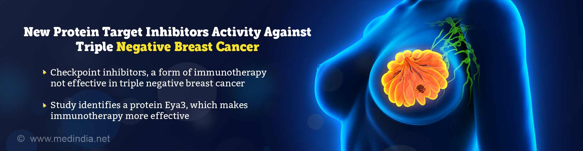 new protein target inhibitors activity against triple negative breast cancer