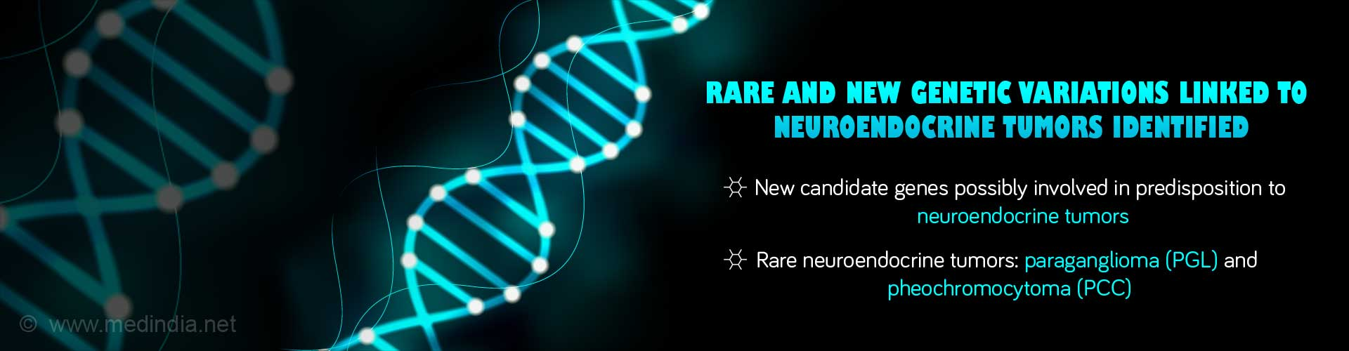 Rare and New Variations Linked to Neuroendocrine Tumors Identified