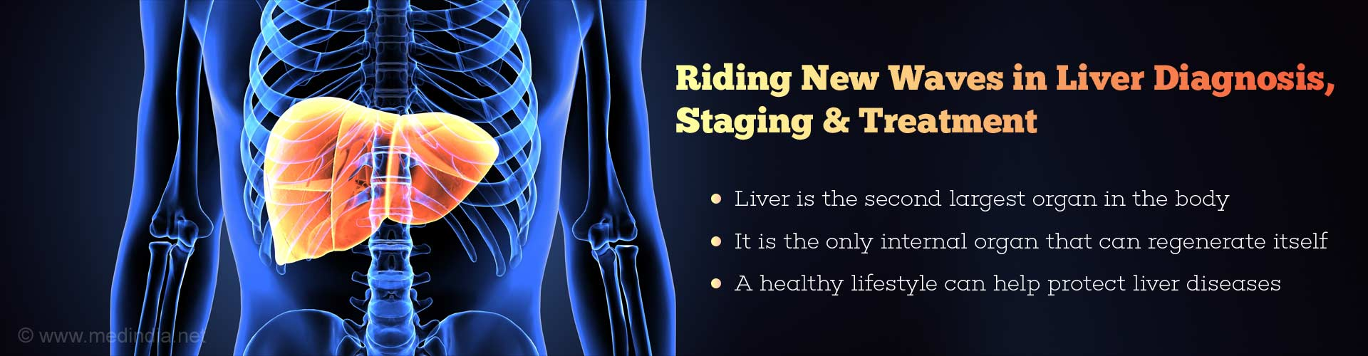 Riding new waves in liver diagnosis, staging & treatment - liver is the second largest organ in the body - it is the only internal organ that can regenerate itself - a healthy lifestyle can help protect liver diseases