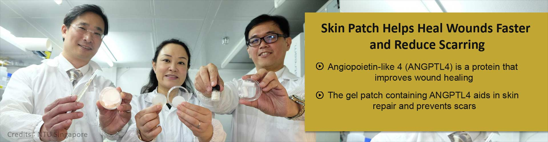 Skin patch helps heal wounds faster and reduce scarring - Angiopoietin-like 4 (ANGPTL4) is a protein that improves wound healing - The gel patch containing ANGPTL4 aids in skin repair and prevents scars