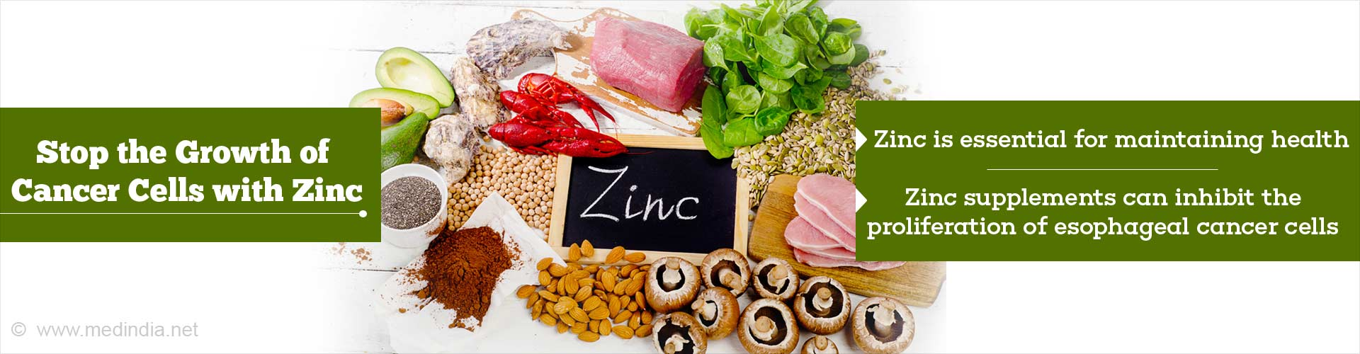 Zinc Can Stop the Growth of Cancer Cells