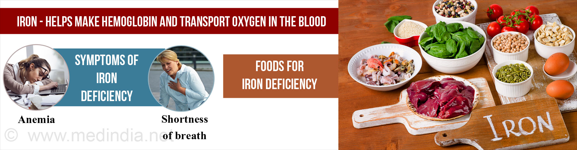 Iron helps make hemoglobin and transports oxygen in the blood
