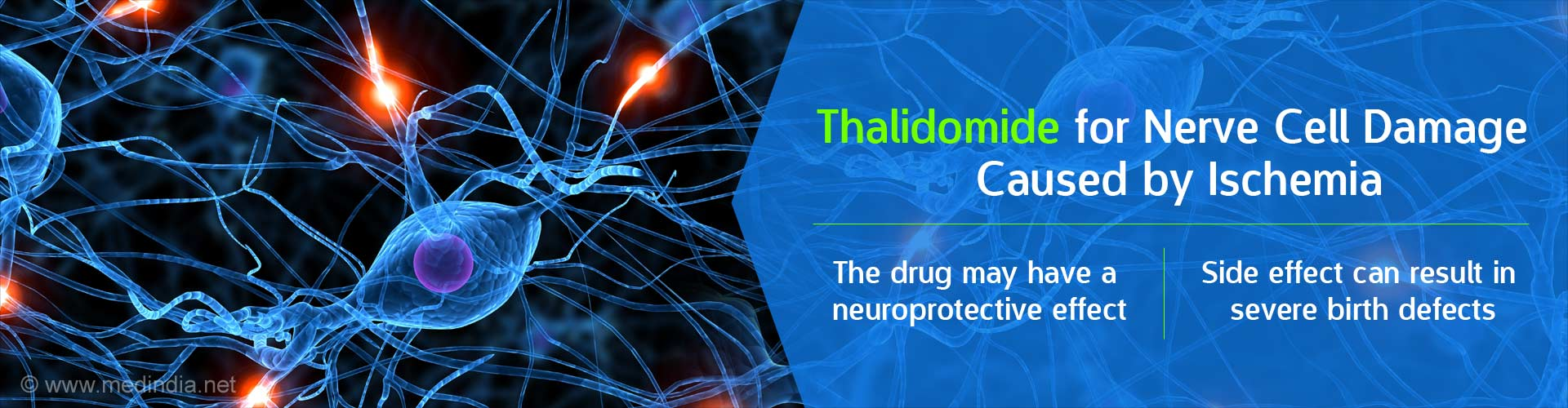 Nerve Cell Damage Caused by Ischemia may be Treated With Thalidomide