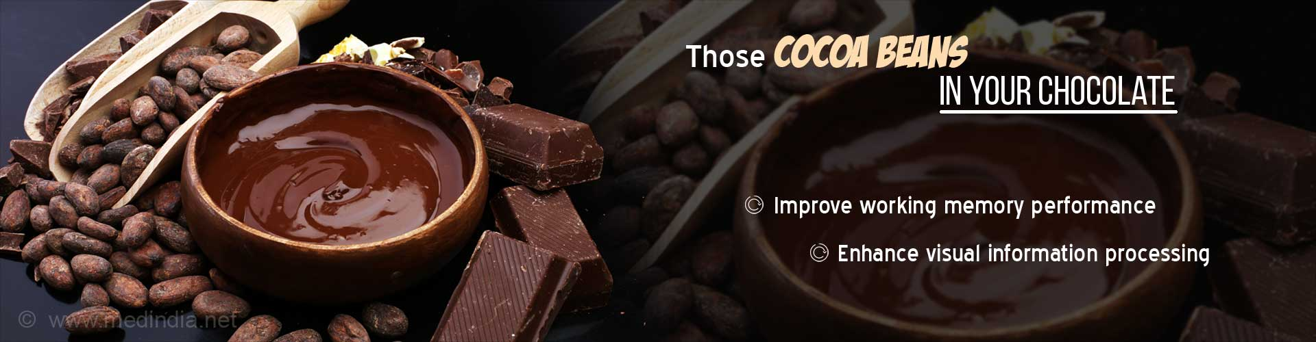 Munch On Your Favorite Chocolate For Better Brain Function