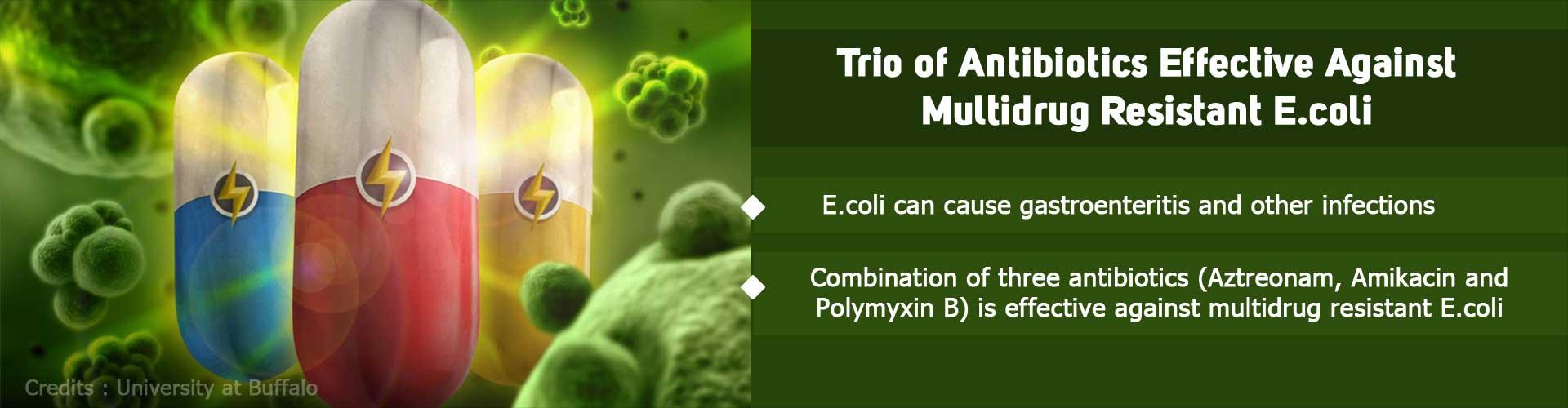 Multidrug Resistant E. Coli Succumbs to a Superteam of Antibiotics