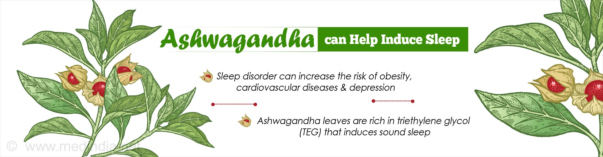 Try Indian Herb Ashwagandha for Sound Sleep