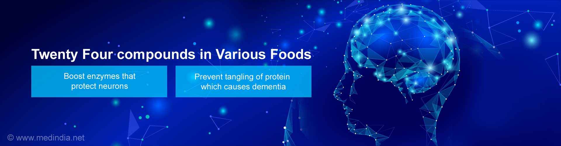 Twenty Four compounds in various foods - Boost enzymes that protect neurons - Prevent tangling of protein which causes dementia