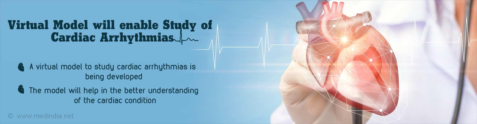 Virtual Model to Study Cardiac Arrhythmias Being Developed
