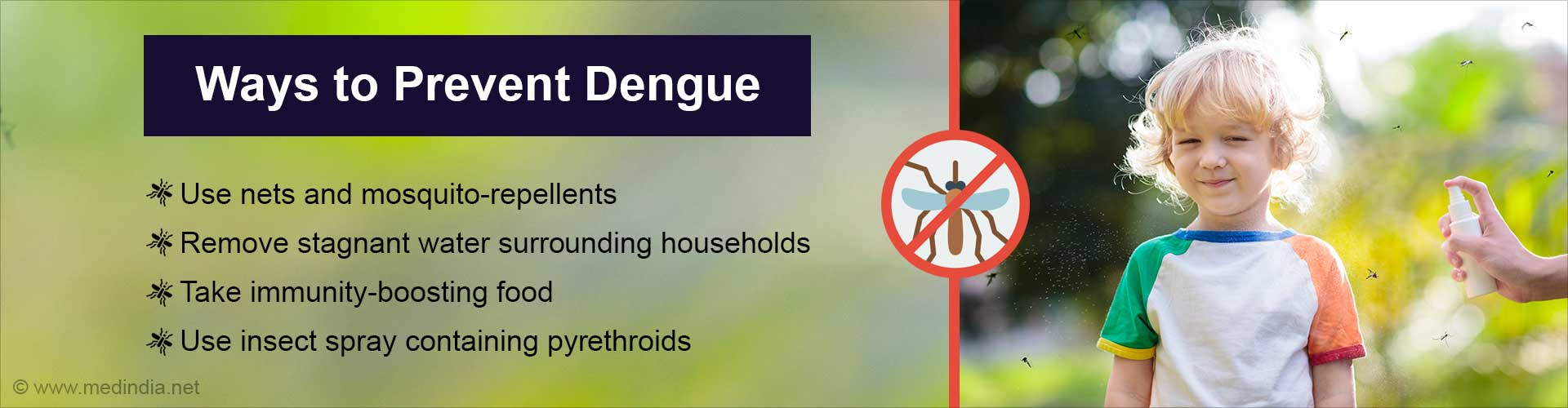 How to Deal With Dengue During the COVID-19 Pandemic?