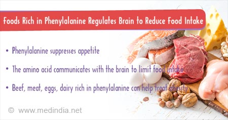 Health Tip on Phenylalanine-rich Diet Regulates Brain To Reduce Food Intake
