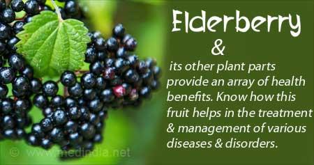 Health Tip on Benefits of Elderberry