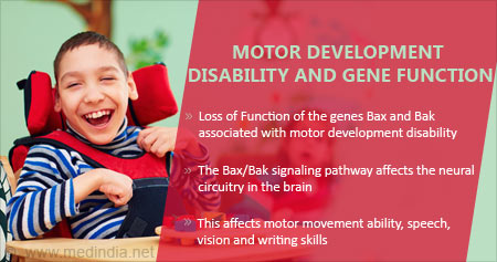 How Motor Development Disability is Linked To Gene Function