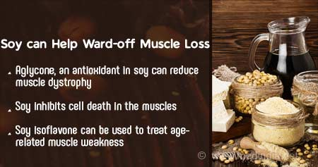 Health Tip on Soy-Based Foods Can Decrease Muscle Atrophy