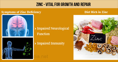 Health Tip on the Benefits of Zinc for the Body