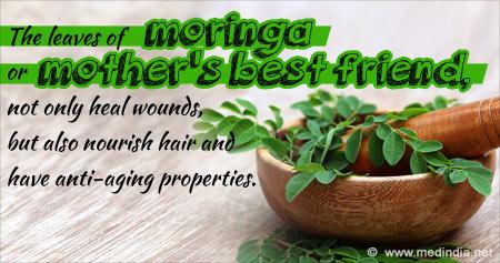 Amazing the Benefits of Moringa Leaves