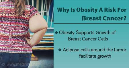 Health Tip on Effects of Obesity on Breast Cancer Cells