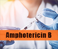 Amphotericin B for Treating Infections