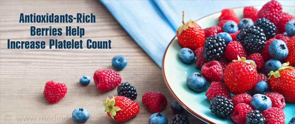 Berries Rich in Antioxidants Helps Increase Platelet Count