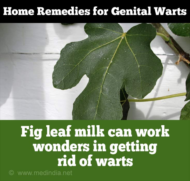 Fig Leaf for Genital Warts