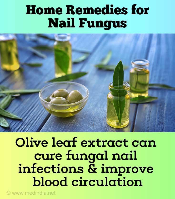 Olive Leaf for Nail Fungus
