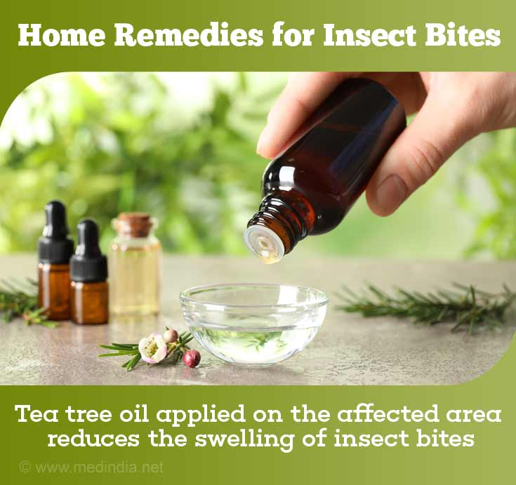 Home Remedies for Insect Bites: Tea Tree Oil