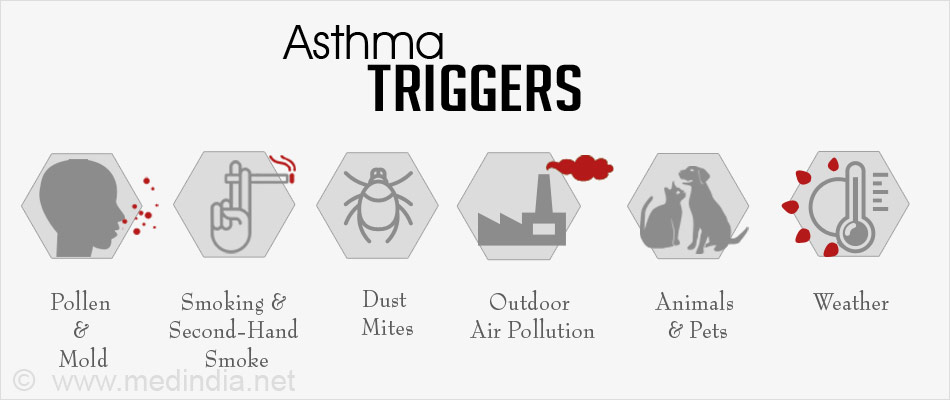 Anatomy Of An Asthma Attack