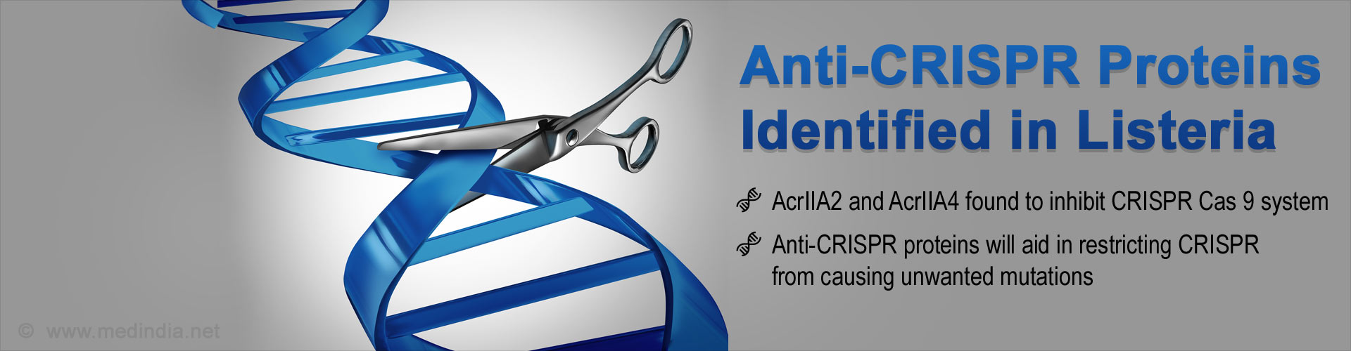 Anti-CRISPR Proteins Identified to Control Gene Editing Tool CRISPR