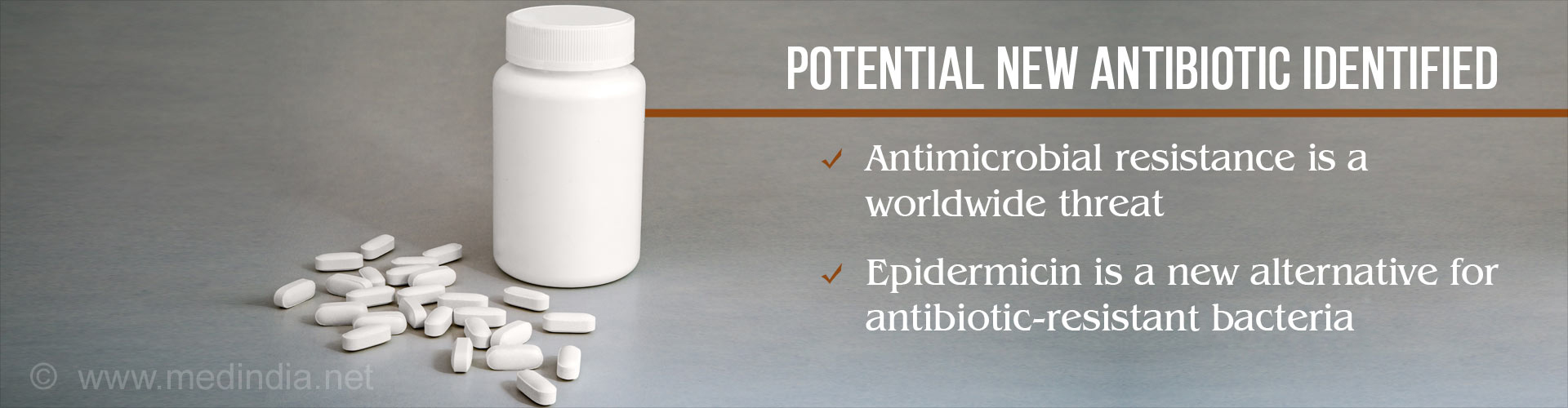 Epidermicin Could be a Potential New Antibiotic