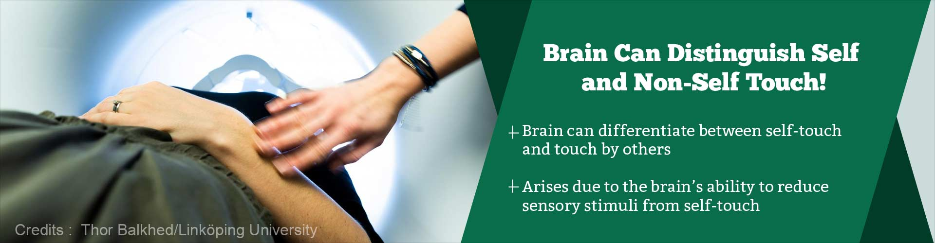 How Does the Brain Differentiate Between Self and Other''s Touch?