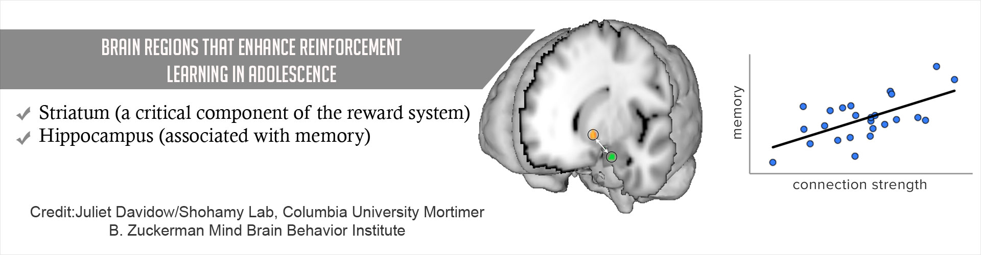 Two Brain Regions are Associated With Learning Circuit in Adolescents