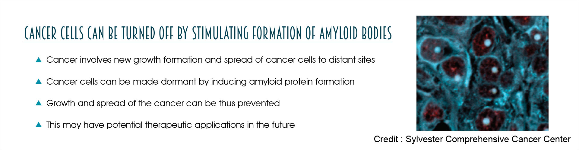 Cancer Cells Can Be Turned Off by Stimulating Formation of Amyloid Bodies