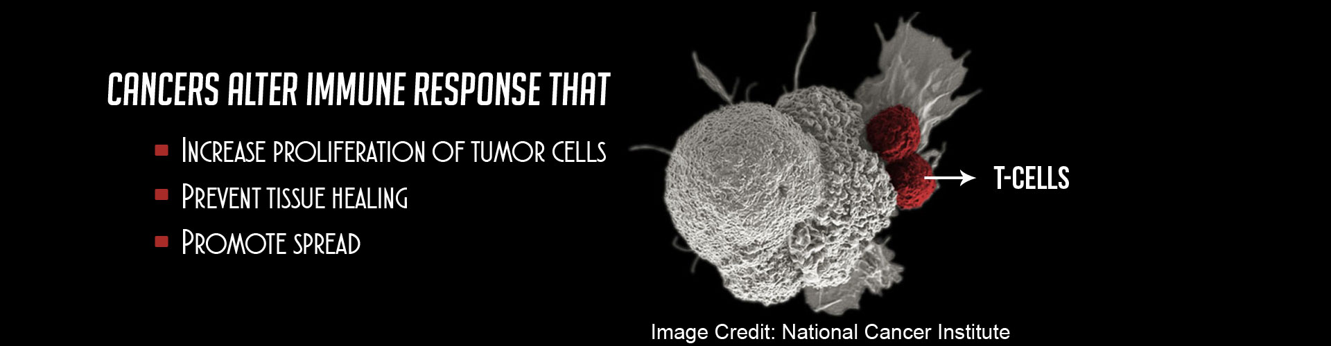 Boost to Immunotherapy by Switching Off Immunosuppression in Cancer, Crohn�s and Alzheimer�s