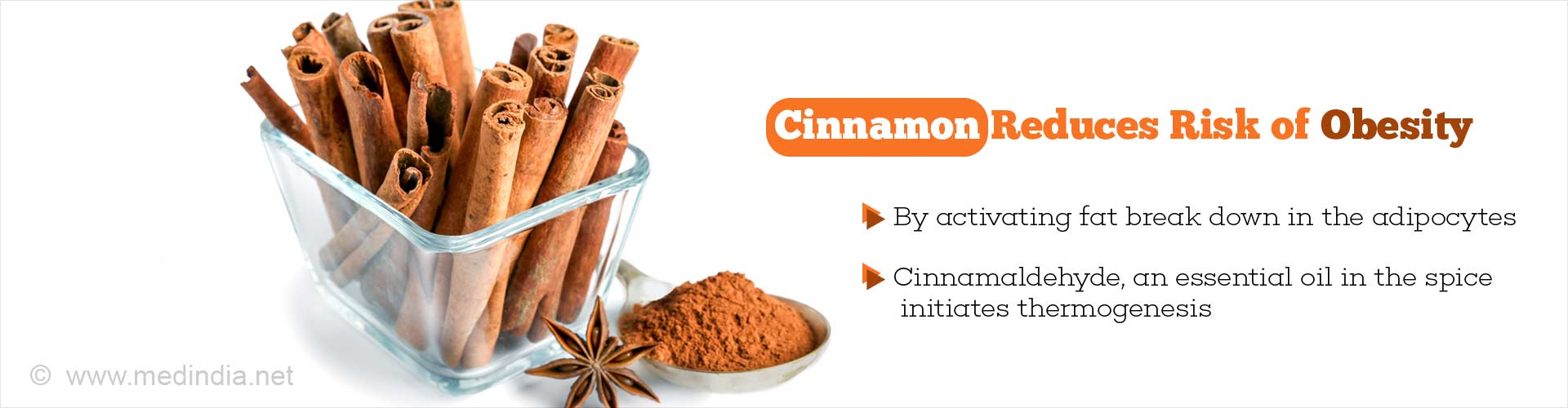 Cinnamon Fights Obesity By Activating Fat Breakdown