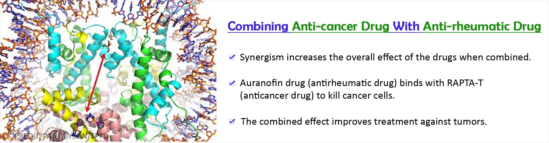 Combination of Anticancer Drug and Antirheumatic Drug Helps Kill Cancer Cells
