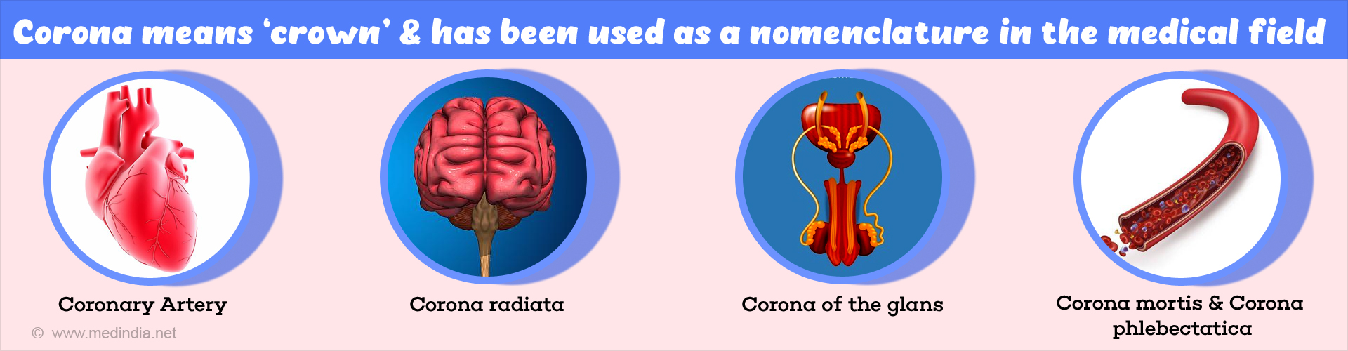 Corona as a Nomenclature in Medical Field