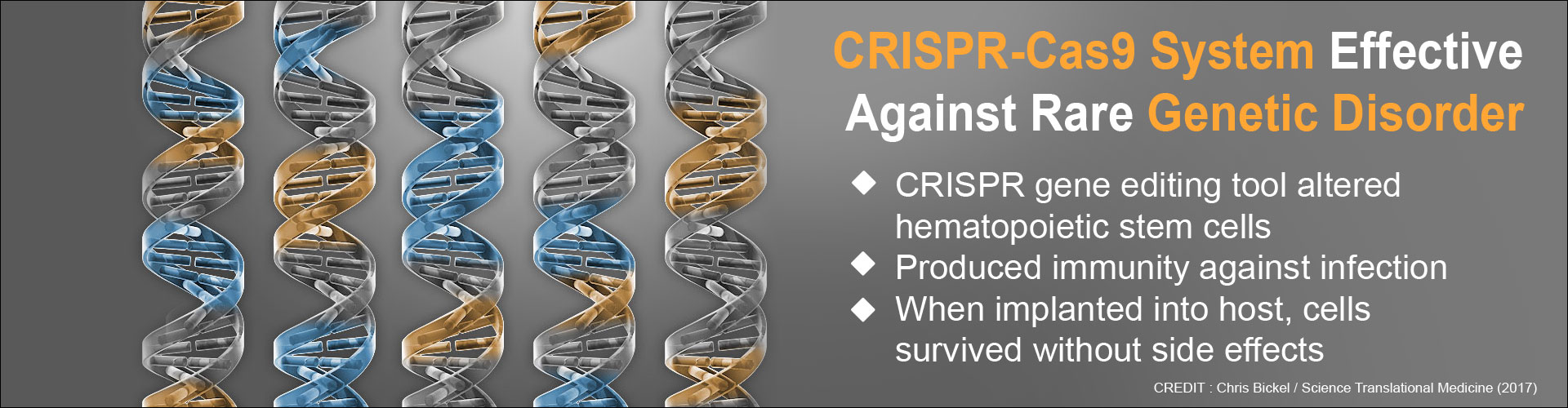 CRISPR-Cas9 Effective Against Genetic Disorder
