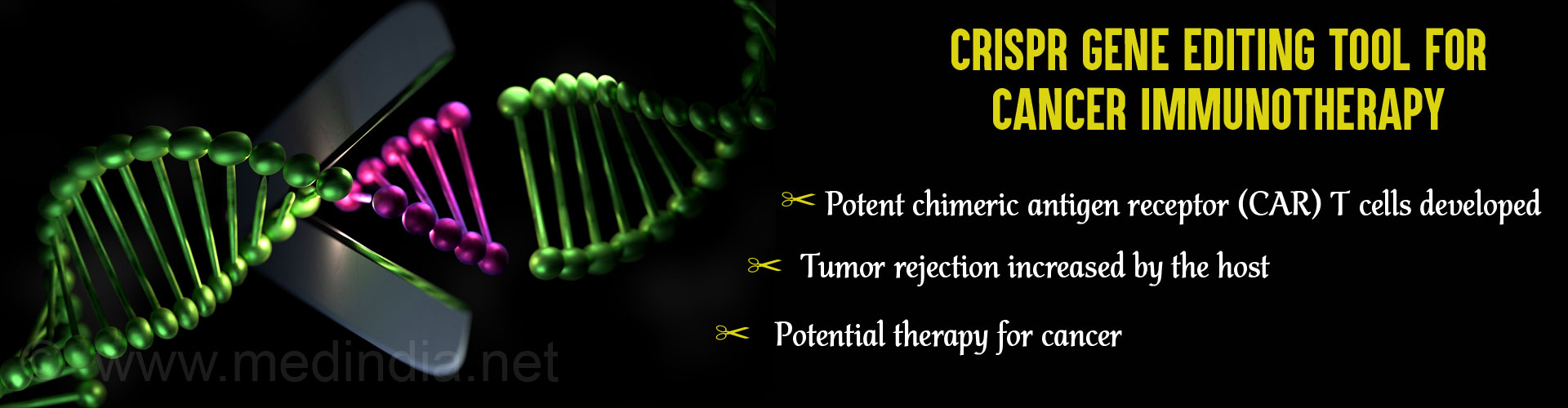 CRISPR/Cas9 System Used to Improve Immune Cell Defense Against Cancer