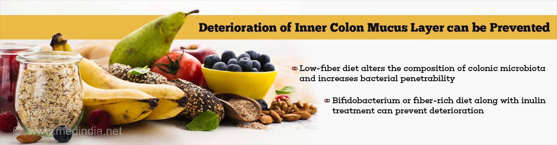 Fiber can Prevent Deterioration of Inner Colon Mucus Layer