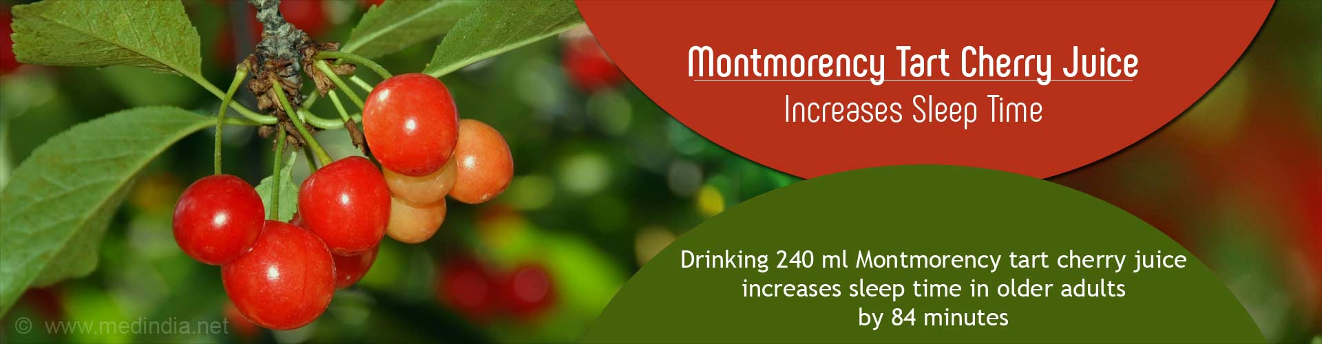 Drinking Cherry Juice Can Increase Sleep Time in Elderly