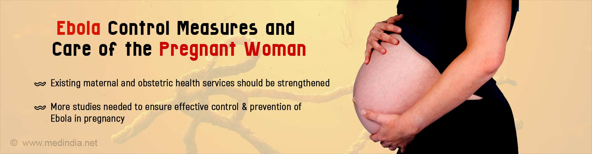 Addressing Pregnancy Related Concerns During Ebola Outbreaks
