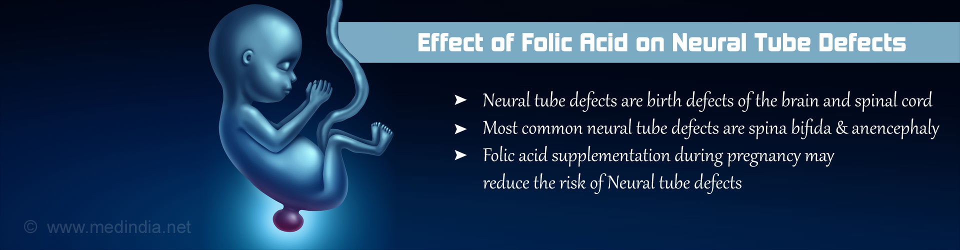 Possible Mechanism of Protective Effect of Folic Acid in Neural Tube Defects