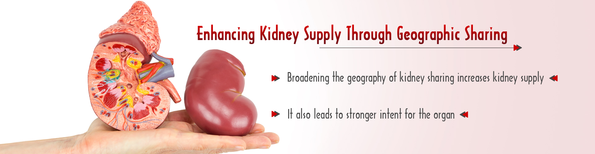 Enhancing Kidney Supply Through Geographic Sharing
