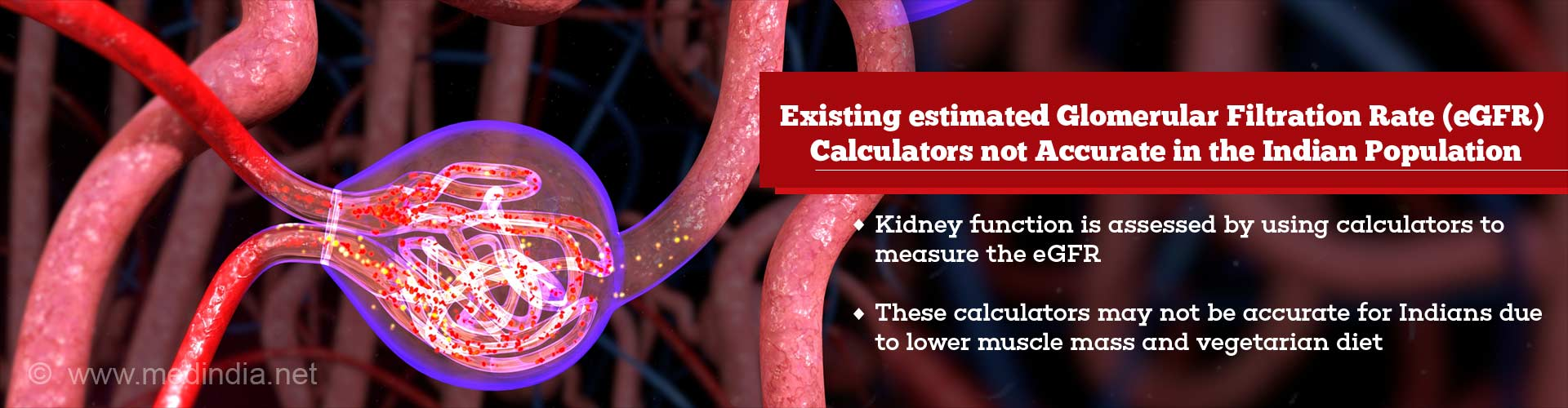 Kidney Function Calculators Not Completely Accurate in the Indian Population