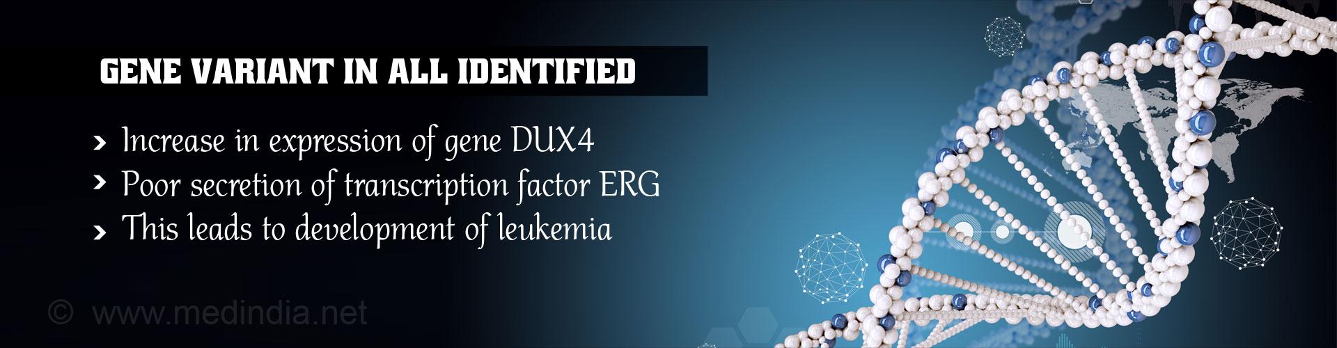 Genetic Changes Linked to Acute Lymphoblastic Leukemia