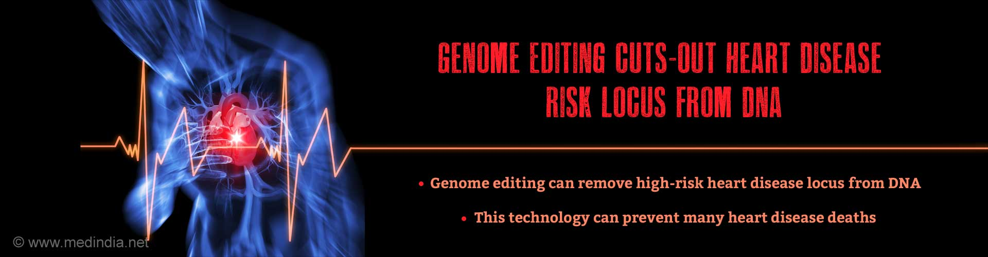 Genome Editing Removes Major Heart Disease Risk Locus from DNA
