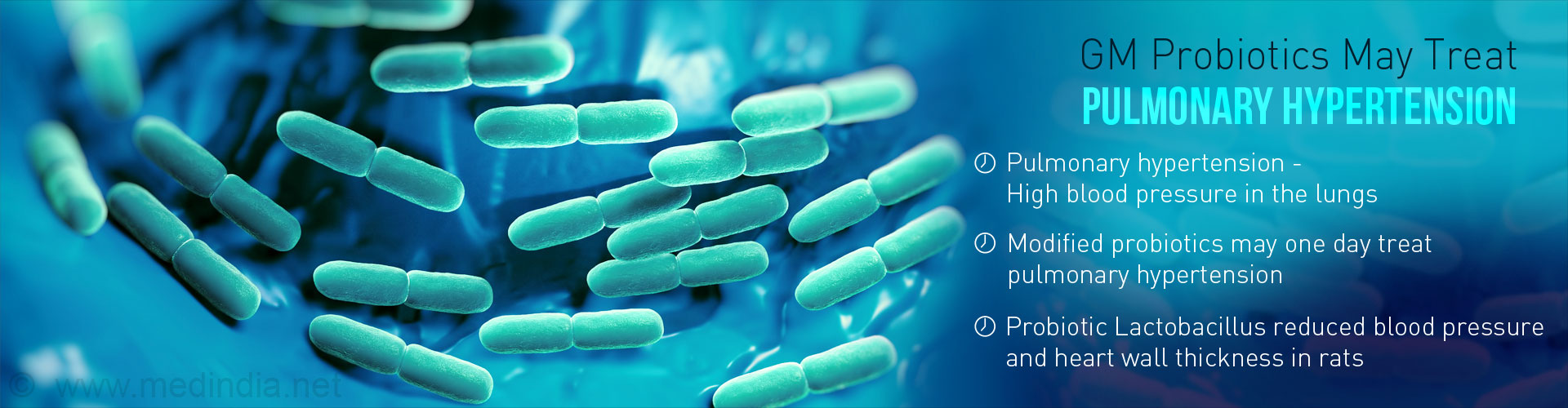 Probiotics may Emerge as Novel Drug Delivery Systems in Pulmonary Hypertension