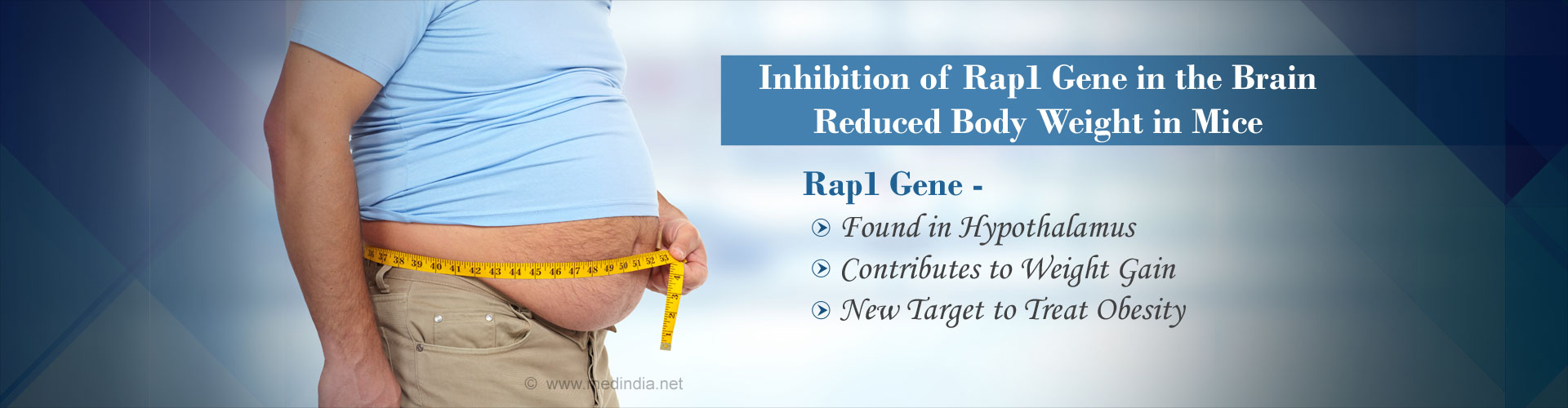 Rap1 Gene in the Brain Could be a Therapeutic Target for Obesity in Future