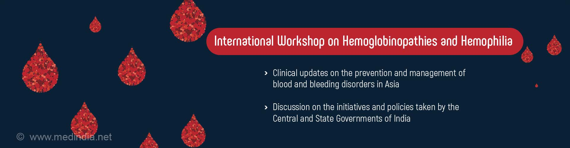 International Workshop on Hemoglobinopathies and Hemophilia at Bangalore