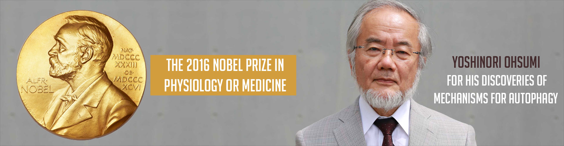 Nobel Prize 2016 in Medicine Goes to Yoshinori Ohsumi for Work on Autophagy